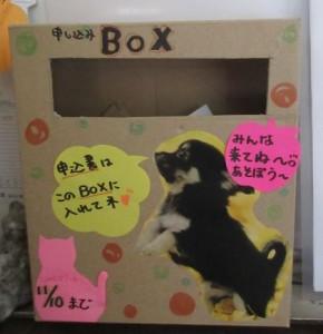 申込BOX